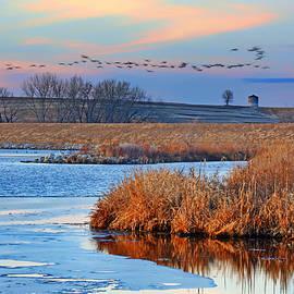 Nikolyn McDonald - Flight - Walnut Creek Lake