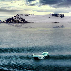 Maria Coulson - Floating Ice