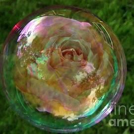 Natalie Ortiz - Floating Iridescent Rose