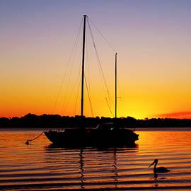 Susan Vineyard - Floating off Bribie Island