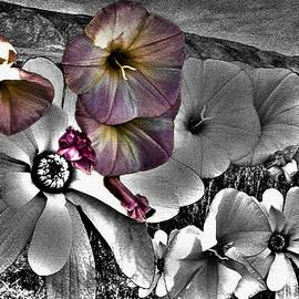 Lisa Holland-Gillem - Floral Apocalypse