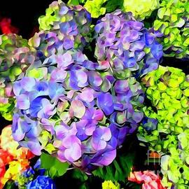 Ed Weidman - Floral Fantasy