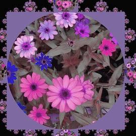 Nancy Pauling - Floral Mix