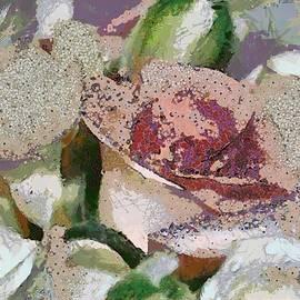 Catherine Lott - Floral Sand