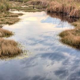 JC Findley - Flordia Wetlands