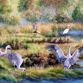 Daniel Butler - Florida Backwoods- Sand hill Cranes