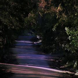 Dick Hudson - Florida Dirt Road