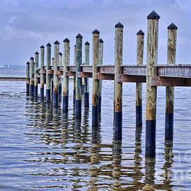 Josephine Cohn - Floridian Pier