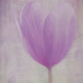 Jordan Blackstone - Flower Art - Love Is The Flower