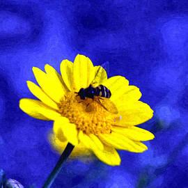 Bliss Of Art - Flower Bee