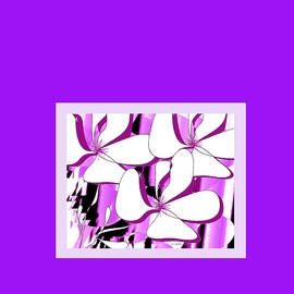 Iris Gelbart - Flower Dreams