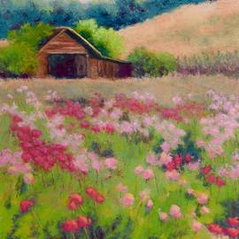 Nancy Jolley - Flower Field