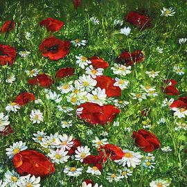 Boyan Dimitrov - Flower fields