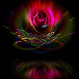 Walter Zettl - Flowermagic 5 Rose