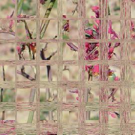 Lenore Senior - Flowers in Glass