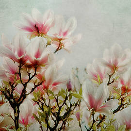 Claudia Moeckel - Flowers Of Spring