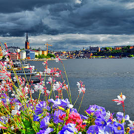 Andy Za - Flowers. Stockholm. Water.
