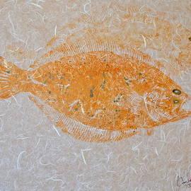 Jeffrey Canha - Fluke - Summer Flounder - Shadowed