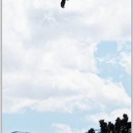Bobbee Rickard - Flying High