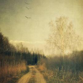 Piotr Tyminski - Flying home #3