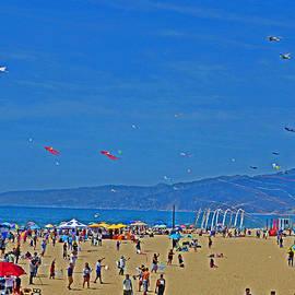 Tina M Wenger - Flying Kites