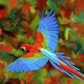 Jerry L Barrett - Flying Parrot