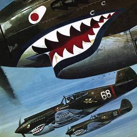 Flying Tigers over Asia - Wilf Hardy