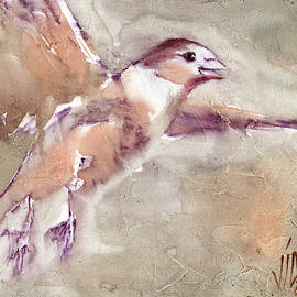 Vali Irina Ciobanu - Flying