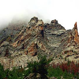 Sheila Brown - Colorado Mountain in Fog