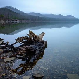 Michael Scott - Foggy Cove