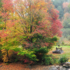 Bill Wakeley - Foggy Fall Morning