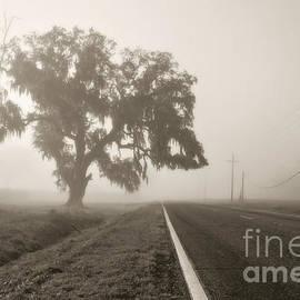 Scott Pellegrin - Foggy Highway