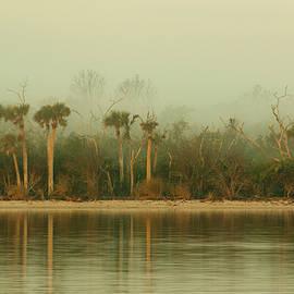 Edie Ann Mendenhall - Foggy Morning In Florida