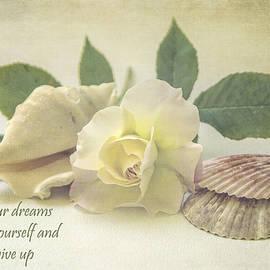 Cathy Kovarik - Follow Your Dreams