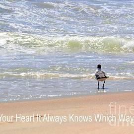 Robyn King - Follow Your Heart Inspirational Art