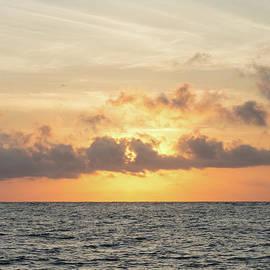 Jennifer White - Folly Beach Morning