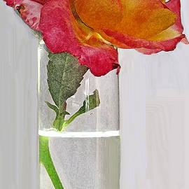 Ian  MacDonald - For Her