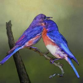 Sandi OReilly - For Love Of Bluebirds