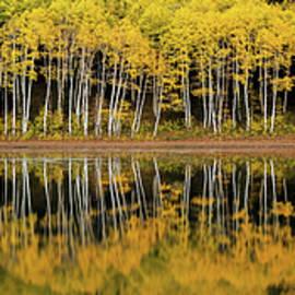 Dustin LeFevre - Forest Lake Reflection