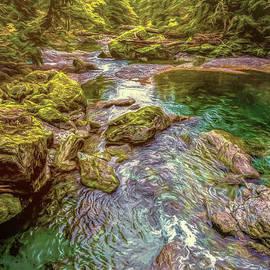 Jean OKeeffe Macro Abundance Art - Forest Pond