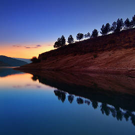 Guido Montanes Castillo - Forest reflection. Blue sunset