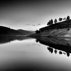 Guido Montanes Castillo - Forest reflection BW