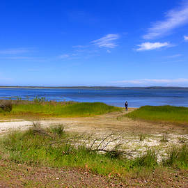 Miroslava Jurcik - Forests Shrublands Wetlands And Heath Of Wollumboola Lake