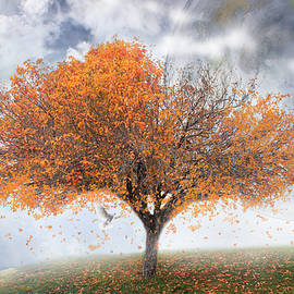 Kume Bryant - Forever Autumn