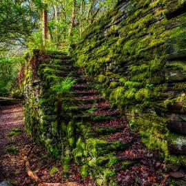 Adrian Evans - Forgotten Steps