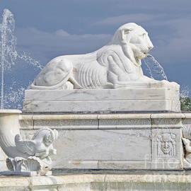 Ann Horn - Fountain Lion