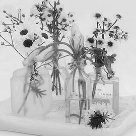 Sandra Foster - Four Bottles And Their Flowers