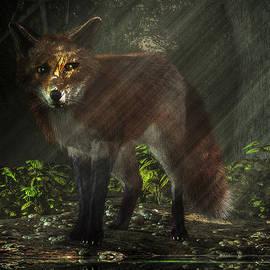 Daniel Eskridge - Fox in the Deep Forest