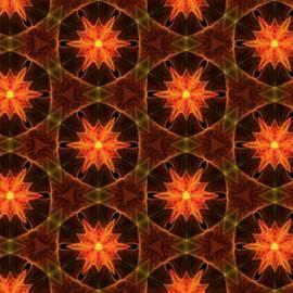 Bruce Nutting - Fractal Pattern 0006