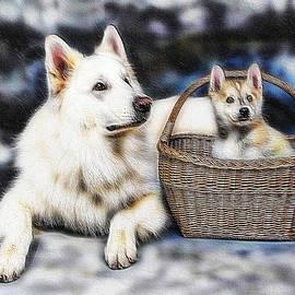 Ericamaxine Price - Fractalius Huskies